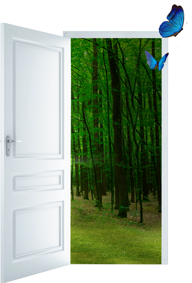 Door_Isolated_butterfly_650h